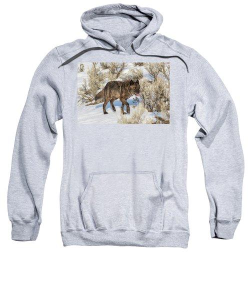 W28 Sweatshirt