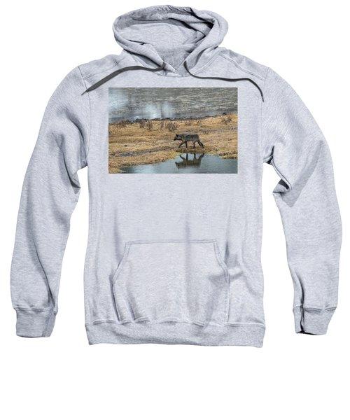 W53 Sweatshirt