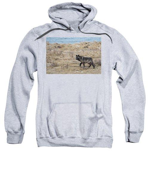 W58 Sweatshirt