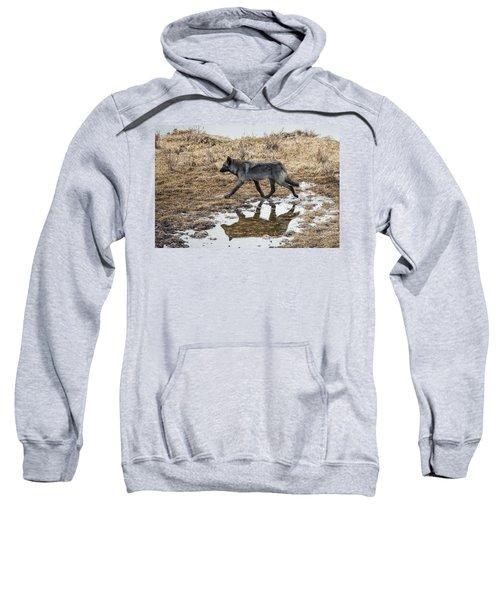 W60 Sweatshirt