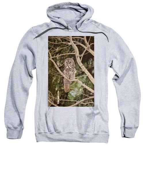 Watchful Sweatshirt