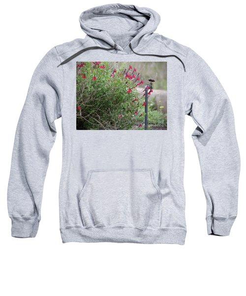 Water In The Garden Sweatshirt
