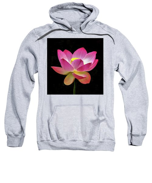 Water Lily In The Light Sweatshirt