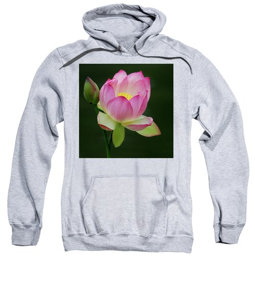 Water Lily In The Pond Sweatshirt