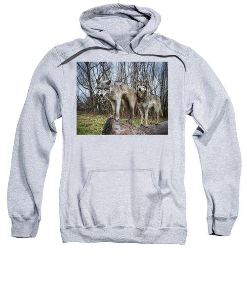Well Hello Sweatshirt