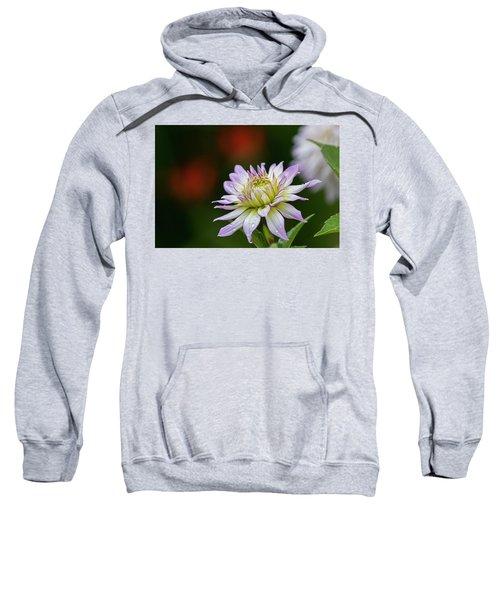 Wet Petals Dahlia Sweatshirt