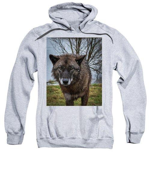 Wet Wolf Sweatshirt