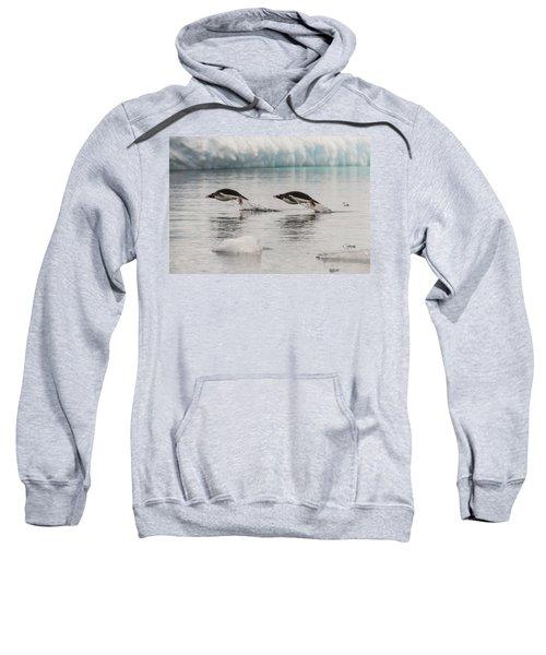 When Penguins Fly Sweatshirt
