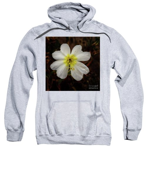 White Evening Primrose Sweatshirt