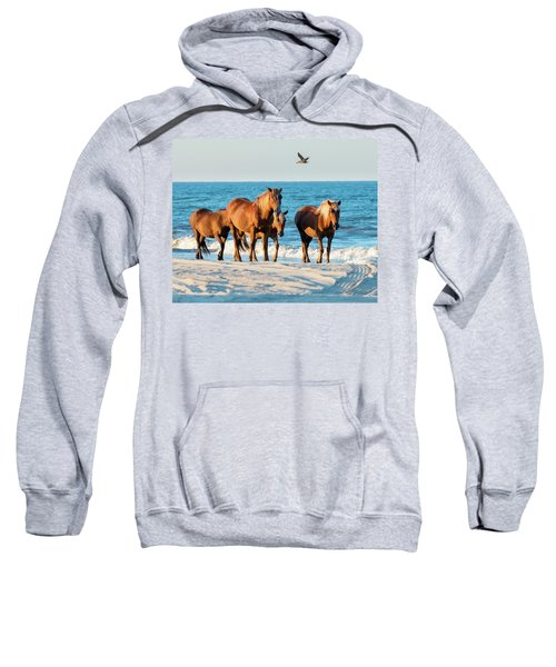 Wild Colonial Spanish Mustangs Of Carova Sweatshirt