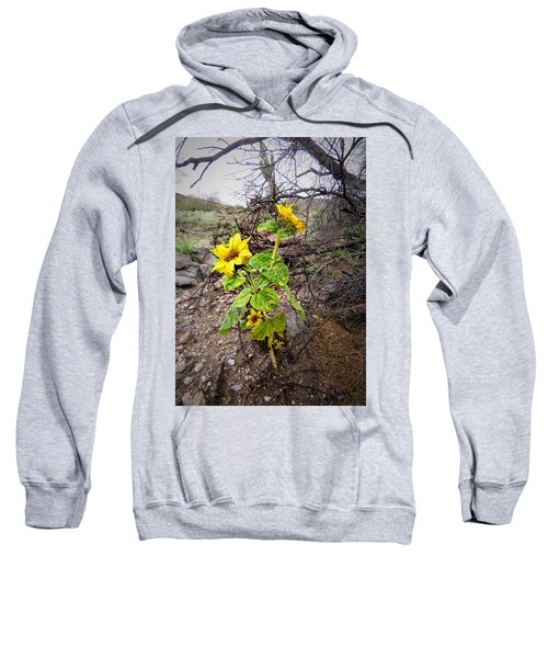 Wild Desert Sunflower Sweatshirt
