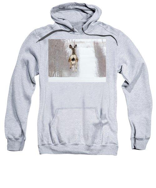 Winter Bounce Sweatshirt