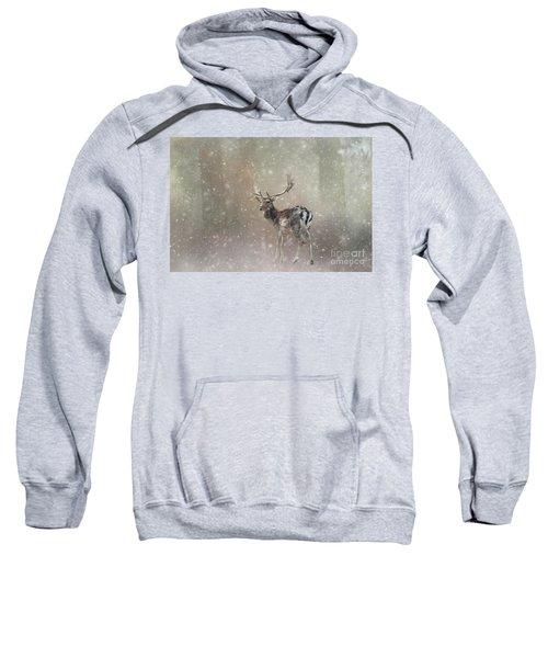 Winter In The Woods Sweatshirt