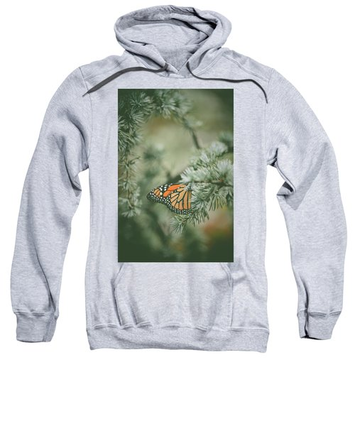 Winter Monarch Sweatshirt