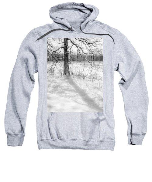 Winter Simple Sweatshirt