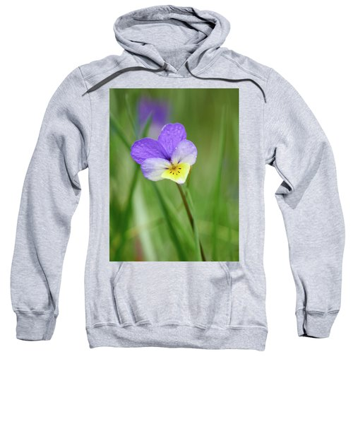 With A Yellow Lip. Jack-jump-up-and-kiss-me. Wild Pansy Sweatshirt