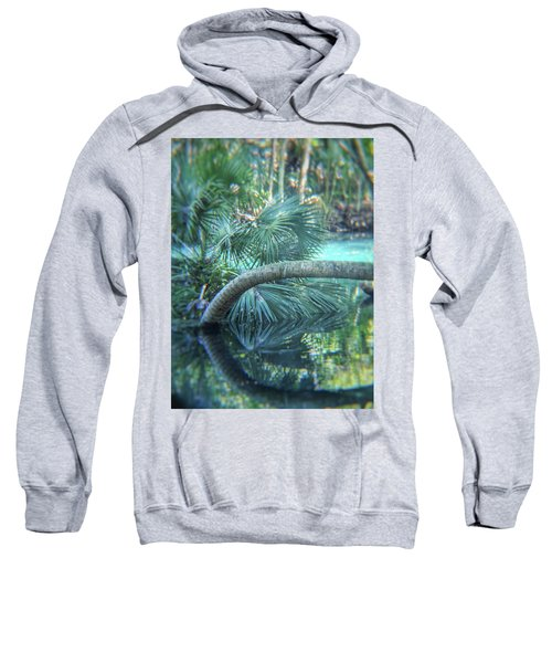 Witnessing Nature Sweatshirt
