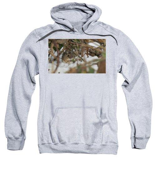 Wood Mouse Sweatshirt