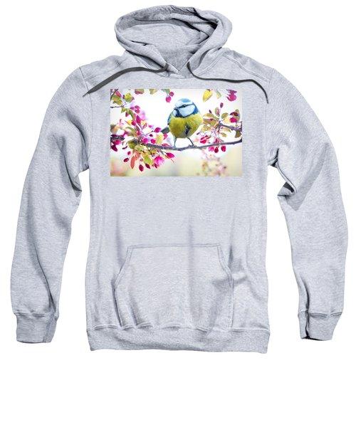 Yellow Blue Bird With Flowers Sweatshirt