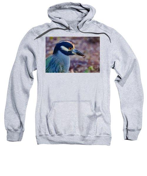 Yellow-crowned Night Heron Sweatshirt