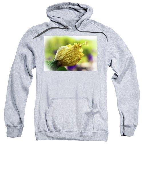 Yellow Mature Hibiscus  Sweatshirt