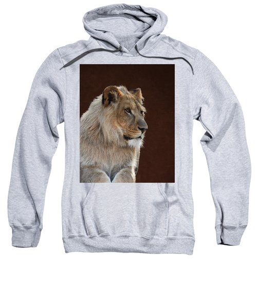 Young Male Lion Portrait Sweatshirt