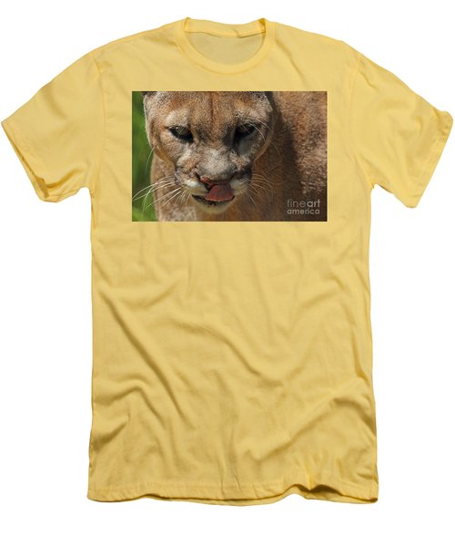 Men's T-Shirt (Slim Fit) featuring the photograph Florida Panther by Meg Rousher