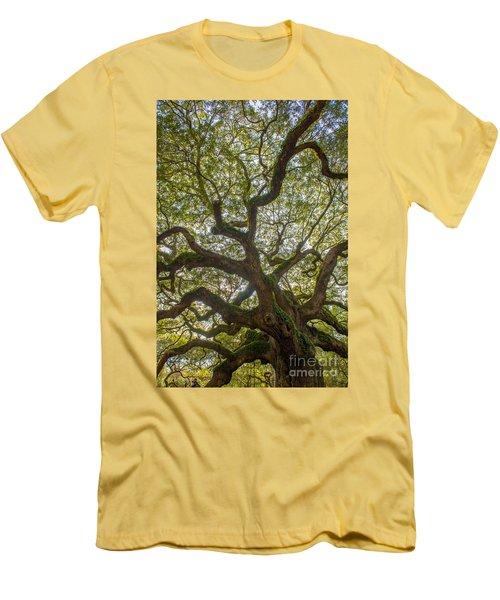 Island Angel Oak Tree Men's T-Shirt (Athletic Fit)