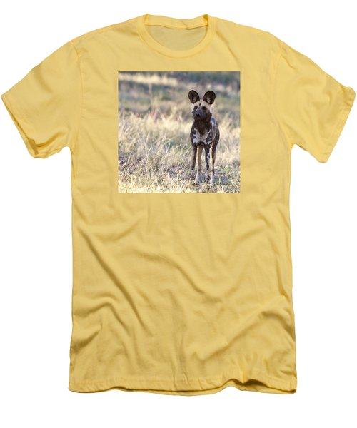 African Wild Dog  Lycaon Pictus Men's T-Shirt (Slim Fit) by Liz Leyden