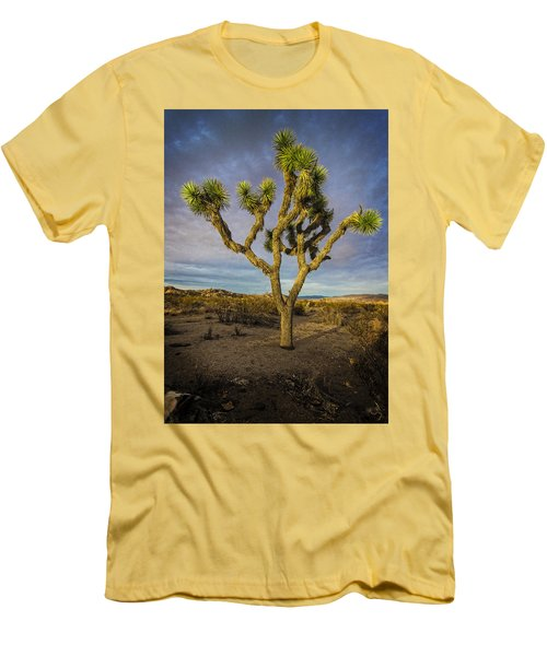 Afternoon Glow Men's T-Shirt (Athletic Fit)