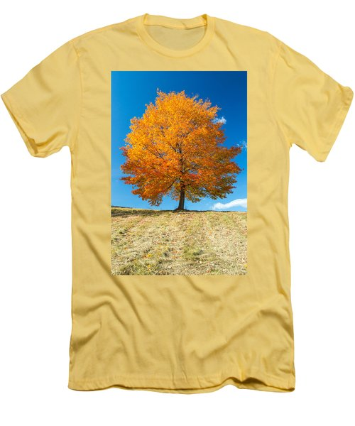 Autumn Tree - 1 Men's T-Shirt (Athletic Fit)