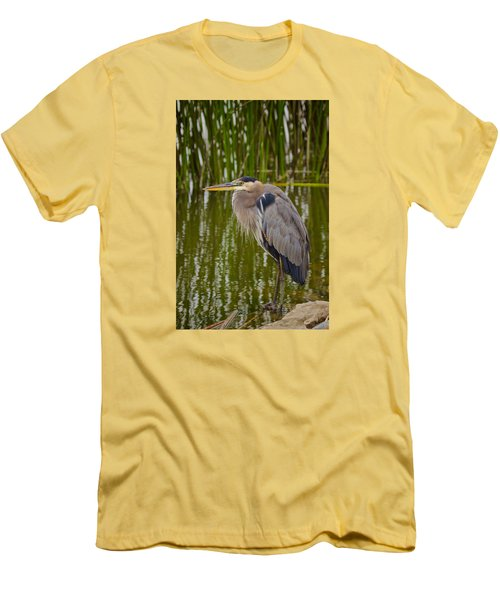 Blue Heron Men's T-Shirt (Slim Fit) by Duncan Selby