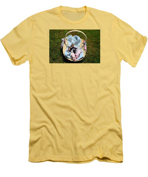 Calicos Pups At Two Days Men's T-Shirt (Athletic Fit)