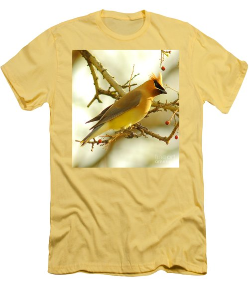 Cedar Waxwing Men's T-Shirt (Slim Fit) by Robert Frederick