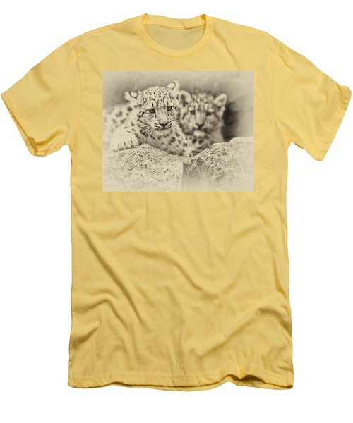 Cubs At Play Men's T-Shirt (Athletic Fit)