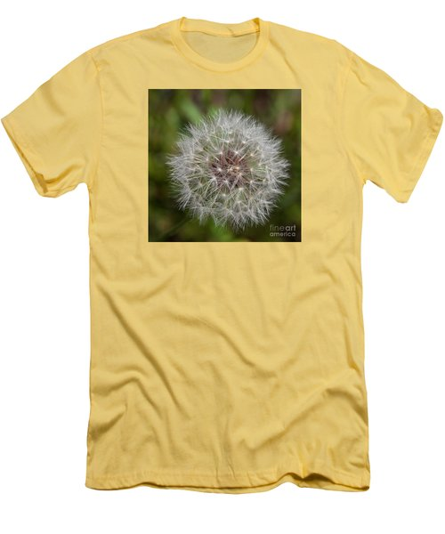Dandelion Clock Men's T-Shirt (Athletic Fit)