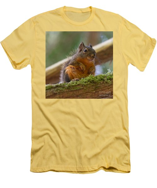 Douglas Squirrel Men's T-Shirt (Athletic Fit)