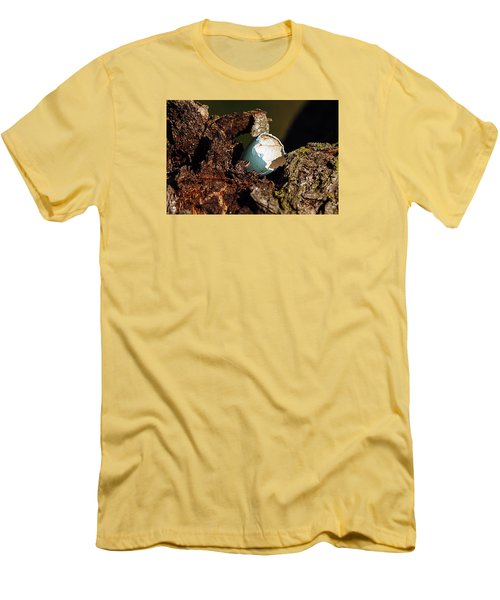 Eggs Of Nature 1 Men's T-Shirt (Slim Fit) by David Lester