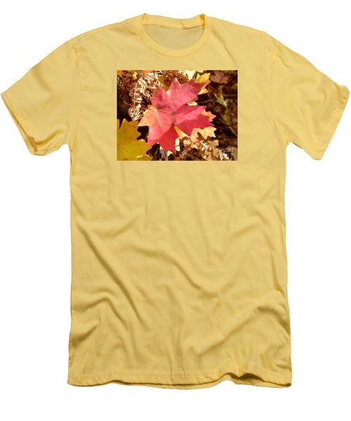 Fall Colors 6313 Men's T-Shirt (Athletic Fit)