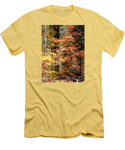 Fall Colors 6412 Men's T-Shirt (Athletic Fit)