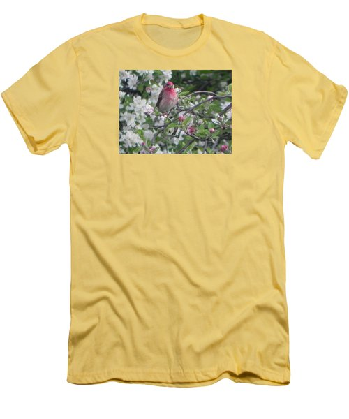 Finch In Apple Tree Men's T-Shirt (Athletic Fit)