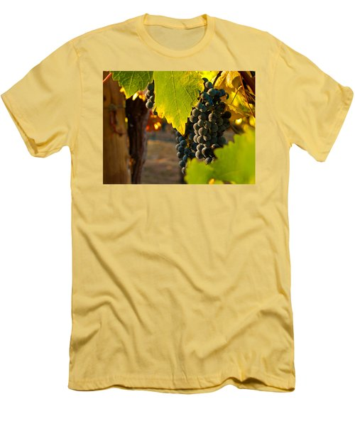 Fruit Of The Vine Men's T-Shirt (Slim Fit) by Bill Gallagher