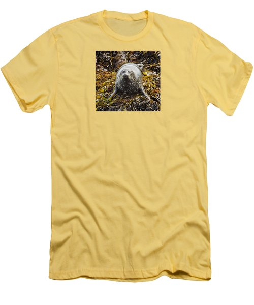 Harbor Seal Men's T-Shirt (Slim Fit) by Alice Cahill
