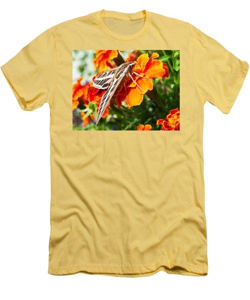 Hummingbird Moth On A Marigold Flower Men's T-Shirt (Slim Fit) by Nadja Rider