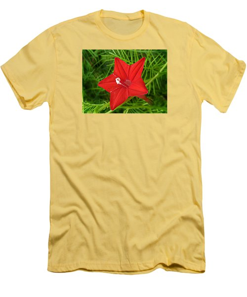 Hummingbird Vine Men's T-Shirt (Slim Fit) by William Tanneberger