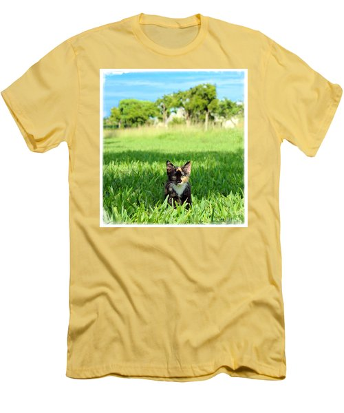 Men's T-Shirt (Slim Fit) featuring the photograph Kitten by Carsten Reisinger