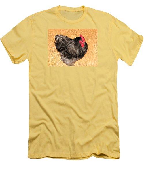 Live Chicken - 2011 Houston Livestock Show Men's T-Shirt (Slim Fit) by Connie Fox