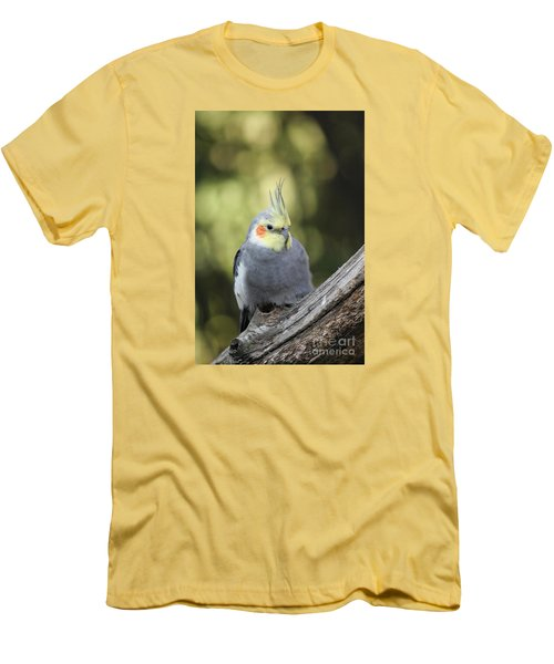 Men's T-Shirt (Slim Fit) featuring the photograph Male Cockatiel by Judy Whitton