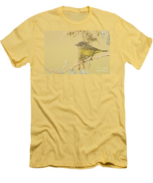 Orange Crowned Warbler Men's T-Shirt (Athletic Fit)