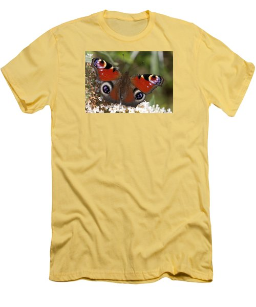 Peacock Butterfly Men's T-Shirt (Slim Fit) by Richard Thomas